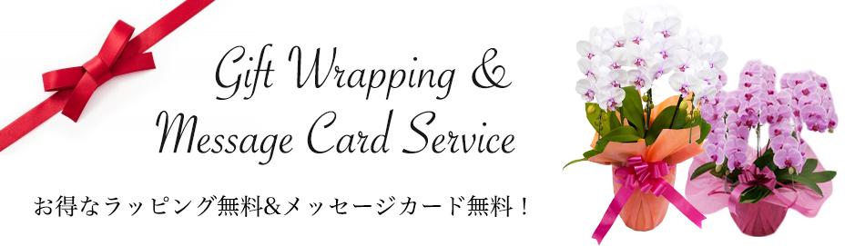 メッセージカード・ラッピング無料
