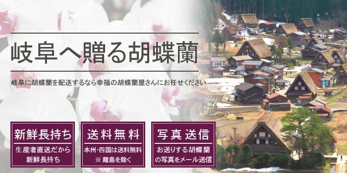 岐阜県へ胡蝶蘭を配送