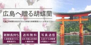 広島県へ胡蝶蘭を配送