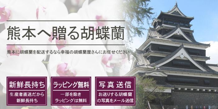 熊本県へ胡蝶蘭を配送するなら