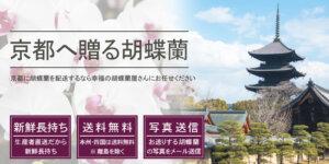 京都府へ胡蝶蘭を配送
