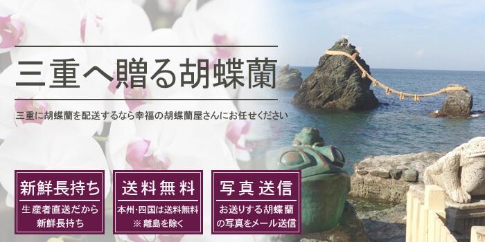 三重県へ胡蝶蘭を配送
