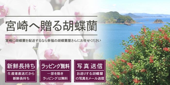 宮崎県へ胡蝶蘭を配送するなら