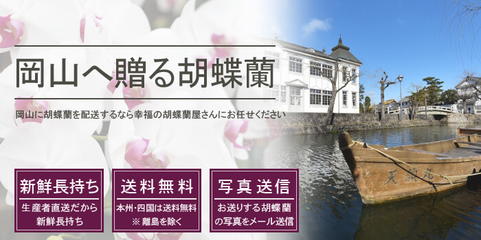 岡山県へ胡蝶蘭を配送