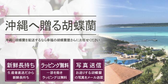沖縄県へ胡蝶蘭を配送