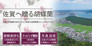 佐賀県へ胡蝶蘭を配送