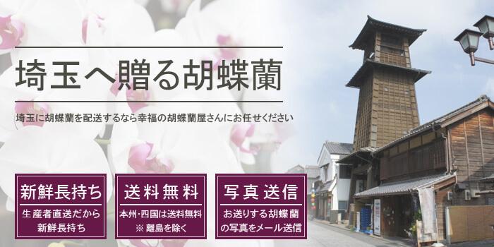 胡蝶蘭を埼玉県に配送する