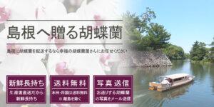 島根県へ胡蝶蘭を配送
