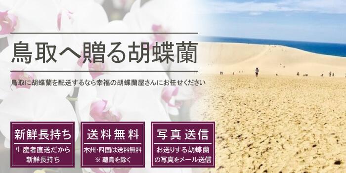 鳥取県へ胡蝶蘭を配送