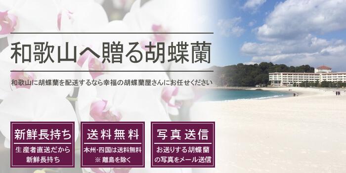 和歌山県へ胡蝶蘭を配送